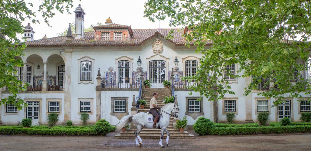 Quinta do Casal Branco | VivaoVinho.Shop