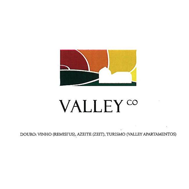 Logo Valley Co | VivaoVinho.Shop