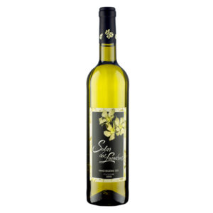 Solar dos Loendros Branco Chardonnay 2018 | VivaoVinho.Shop